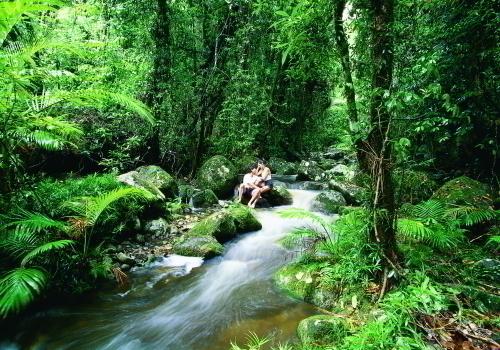 小川のせせらぎが優しいモスマン渓谷