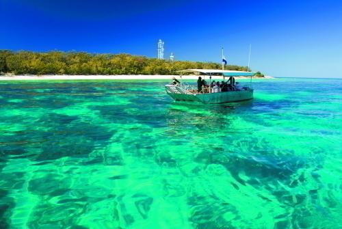 水に濡れずに海の美しさを堪能したい方はグラスボトムボートで!