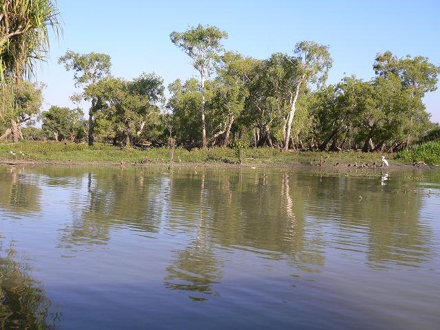 静かな川マリー・リバー