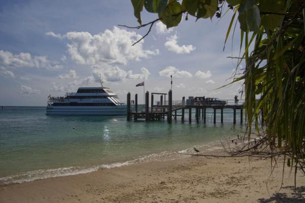 クルーズ船と桟橋の様子