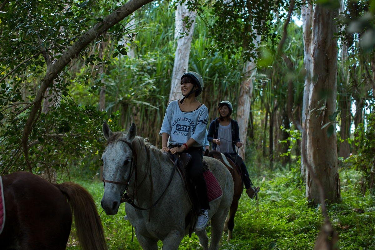 馬と自然に癒されます