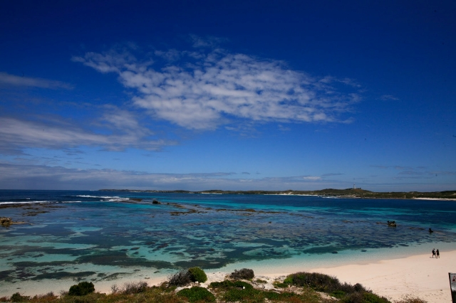 美しいロットネスト島