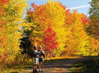 紅葉も綺麗な秋のプリンスエドワード島