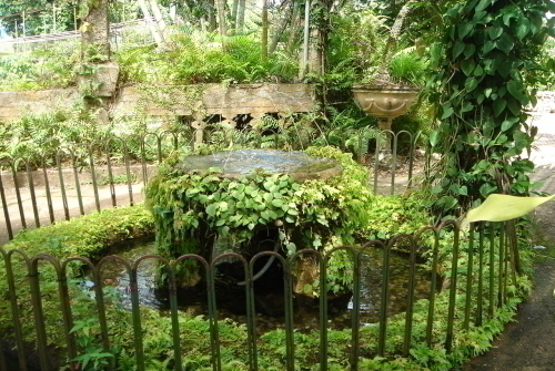 願いがかなう願掛けの泉