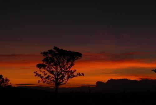美しいマンガリの夕暮れ