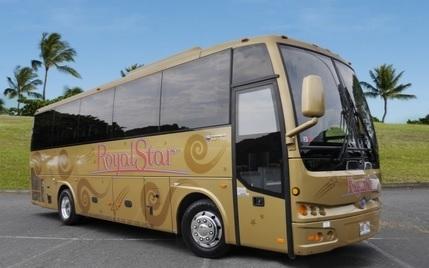 ゴールドTEMSA30シリーズ