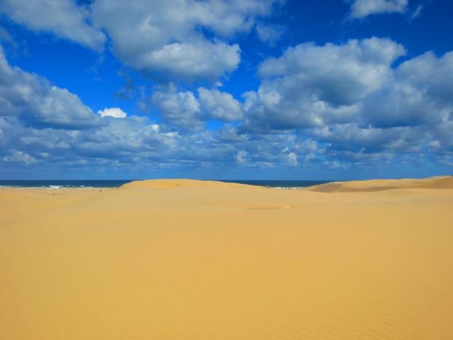 砂丘の向こうには海が続きます。