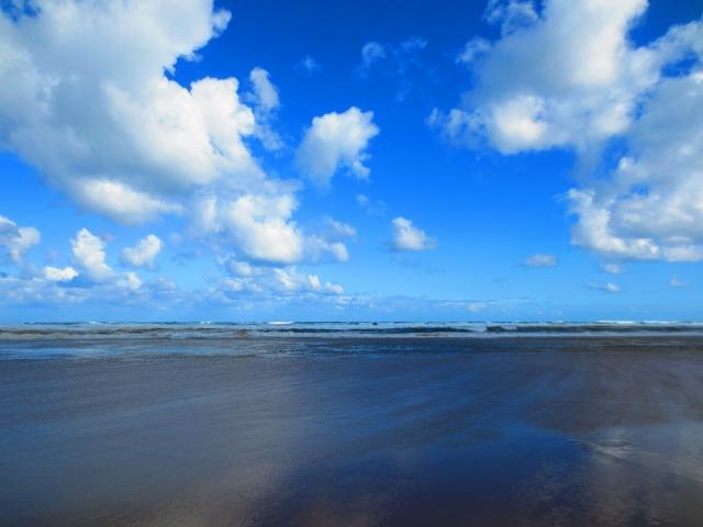 砂丘の近くの海辺の風景
