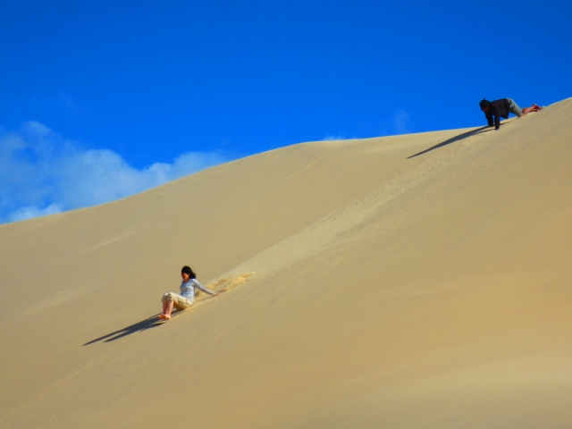 楽しい砂丘滑り