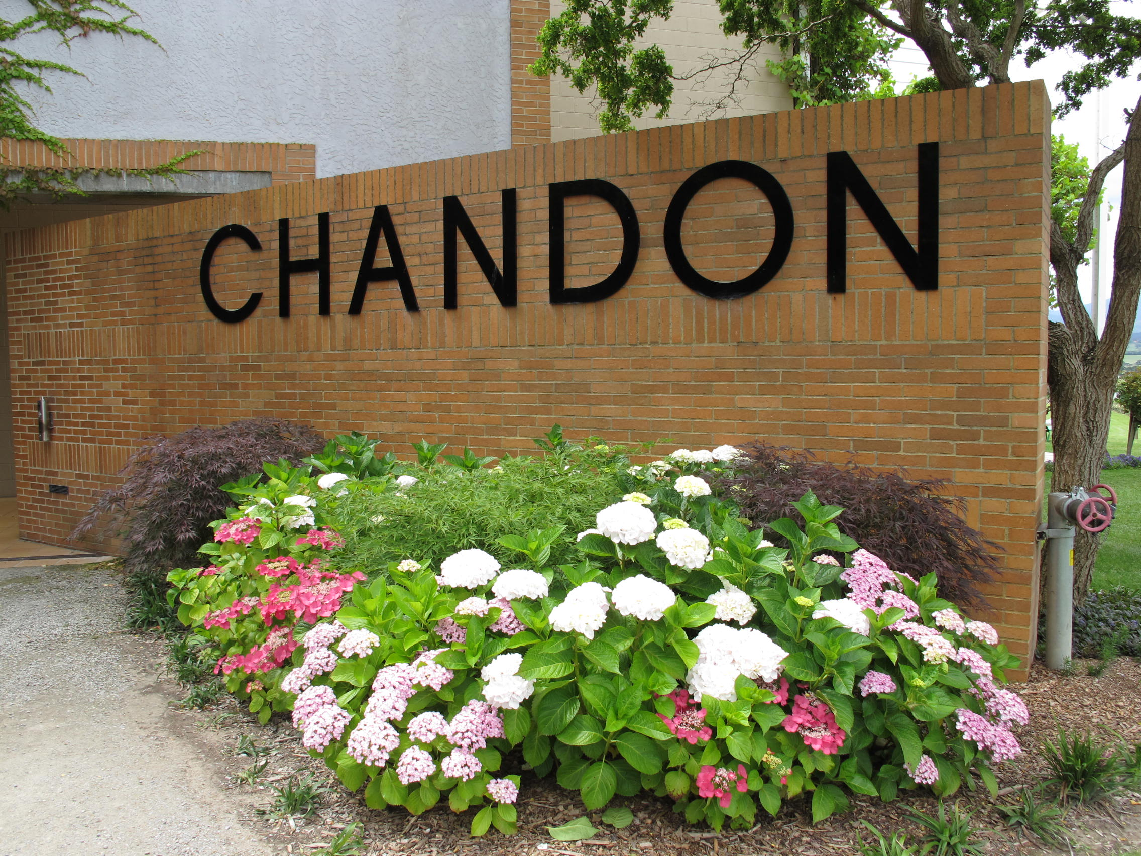 Domain Chandonです!!