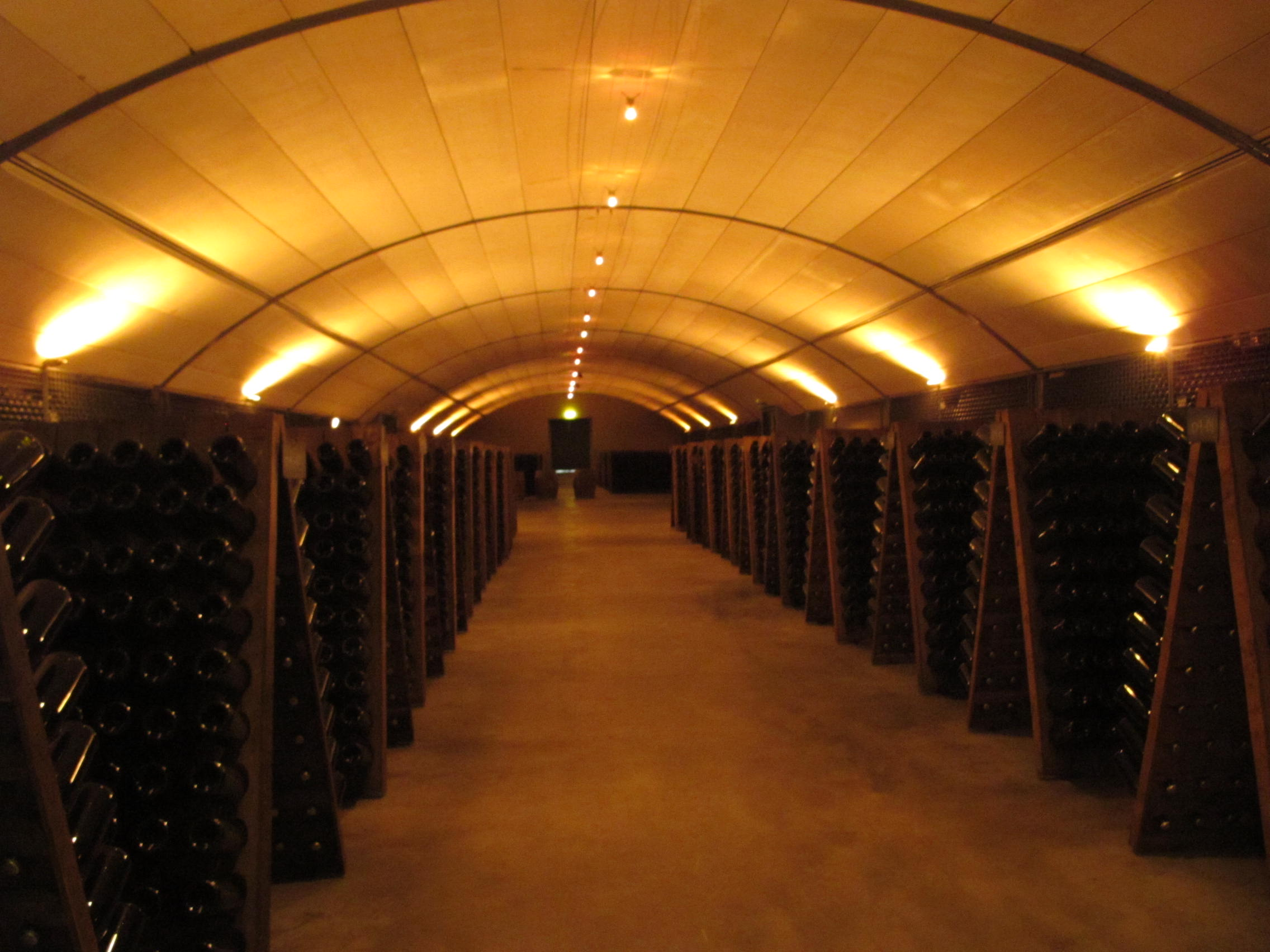 ワインセラーにはこんなにたくさんのワインが!