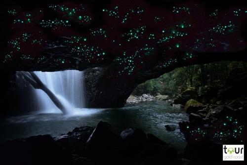 自然洞窟内は土ボタルの神秘の世界観が広がります。
