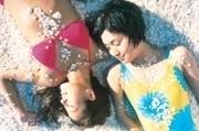 貝殻でできたシェルビーチ