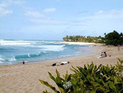 美しいノースショアのビーチ