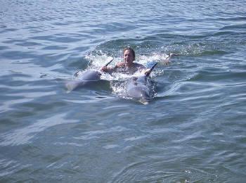 イルカと遊びます
