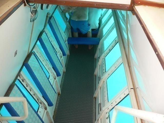 半潜水艦で海の中を散歩しよう!!