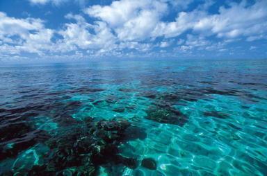 珊瑚礁がきれいなアウターリーフ