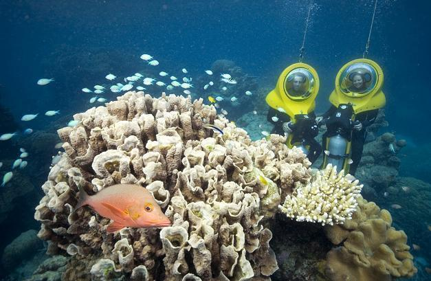 オプションのスクーバドゥで海中探索