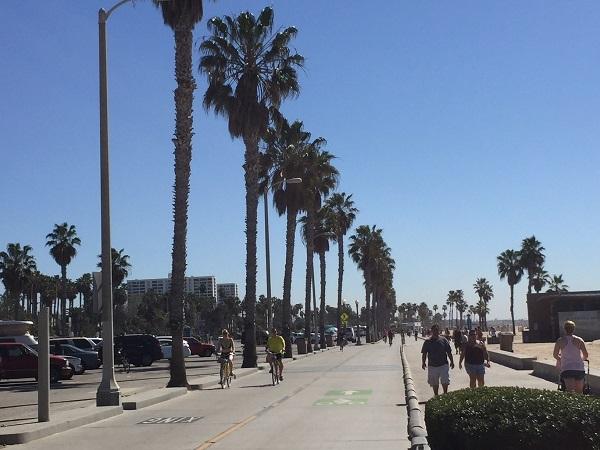 ヤシの木に青い空!!     これぞまさにロサンゼルス!