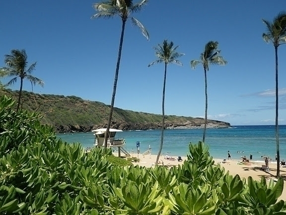 楽園ハワイを代表する景色