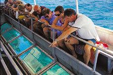 グラスボトムボート