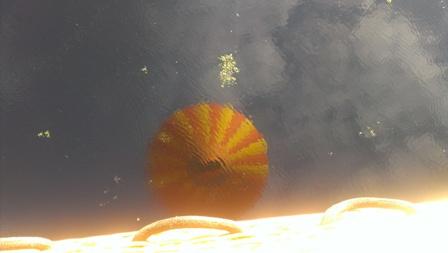 湖に写った気球