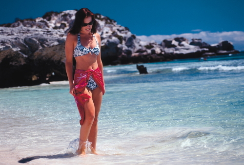 透き通るようなにきれいなビーチを散歩