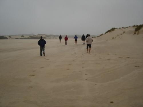 ヘンティー砂丘