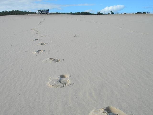 ずーっと砂です