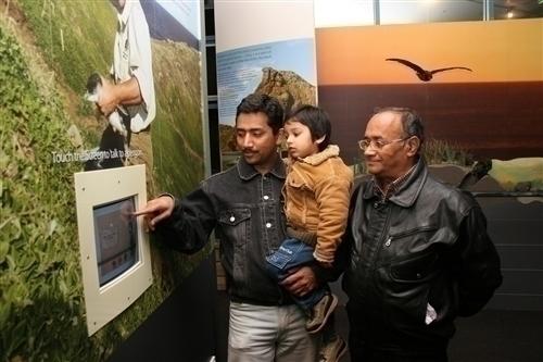 ペンギンに関する展示もあります