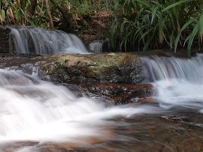 小川のせせらぎが心を癒してくれます。