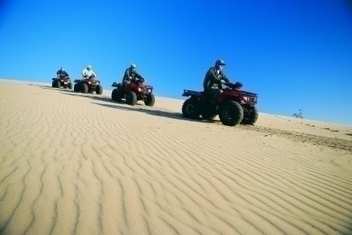 人気のサンドバギーツアー 大砂丘を駆け巡ります