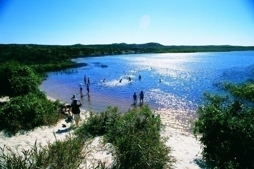 サファリツアーで訪れる淡水湖 ブルーラグーン