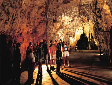 ワイトモ洞窟に関するガイドがらの説明