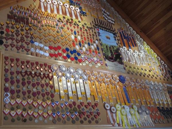 凄い数のメダル!毎年、賞を受賞しています