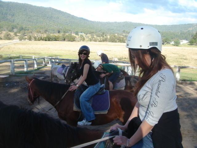 まずは馬選びです