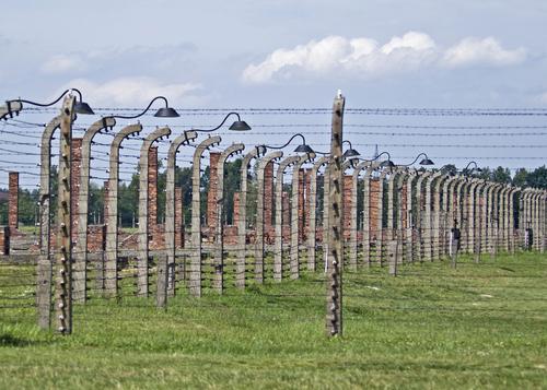 ビルケナウ強制収容所の鉄条網