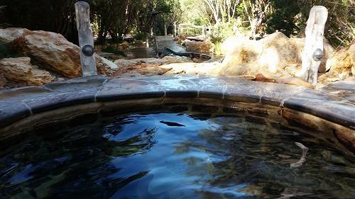 温泉の様子