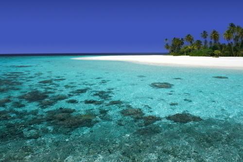 夢の楽園マニャガハ島