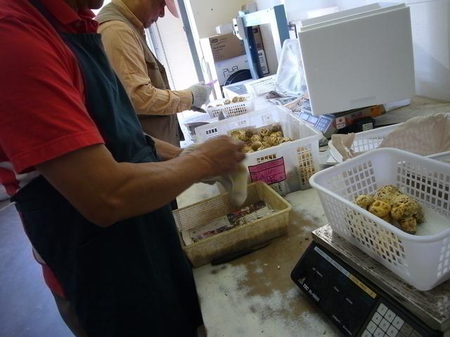 届いたばかりの松茸をすぐに工場で仕分けしいいものだけを日本へ発送