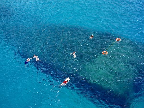 海の透明度は抜群!