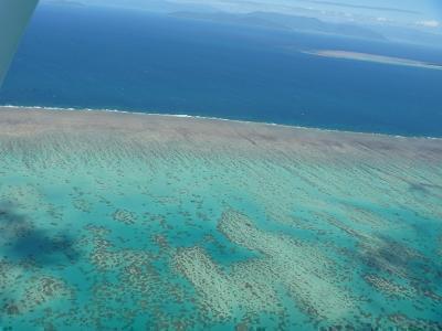 サンゴ礁と青い海の境界です