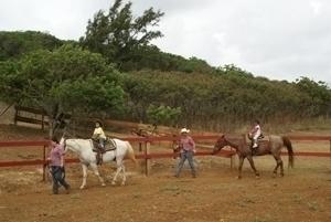 ケイキ乗馬